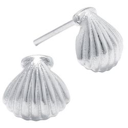 Sterling Earrings Coastal Shell Stud Earrings