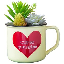 Natural Life Cup Of Sunshine Faux Succulent Plant & Mug