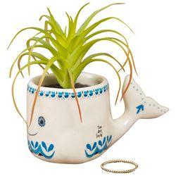 Natural Life Whale Faux Succulent Plant