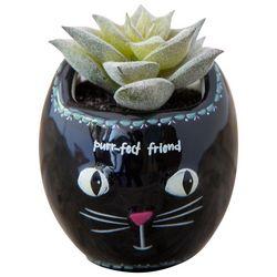 Natural Life Purr-fect Friend Cat Faux Succulent Plant