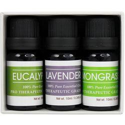 Beauty Frizz 3-pk. Aromatherapy Essential Oils Set
