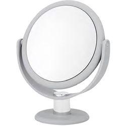 Danielle Silver Tone Mirror