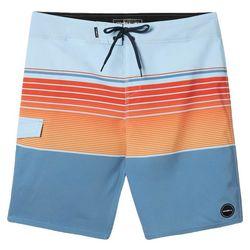 O'Neill Mens Lennox Stripe Print Boardshorts