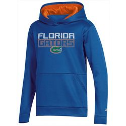 Florida Gators Big Boys Pull Over Hoodie by Champion