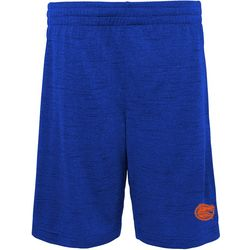 Florida Gators Big Boys Side Stripe Logo Shorts