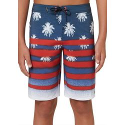 O'Neill Big Boys Hyperfreak USA Striped Boardshorts