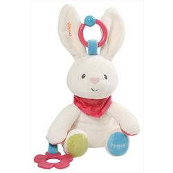 Gund Flora Bunny Activity Plush Toy