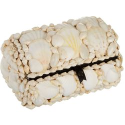 HS Seashells Small White Shell Decorative Box