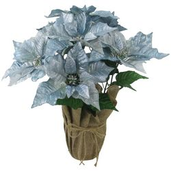 Brighten the Season Sandy Shores Blue Poinsettia Arrangement