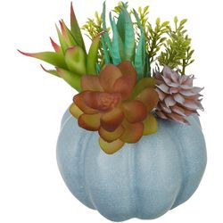 Brighten The Season Blue Succulent Pumpkin