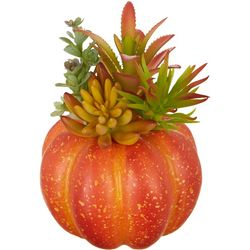 Brighten The Season Orange Succulent Pumpkin