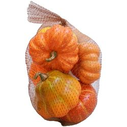 Brighten The Season Pumpkin Mesh Bag Set