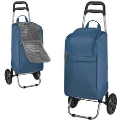 Oniva Solid Rolling Cart Cooler