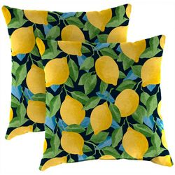 Jordan Manufacturing 2-pk. Citrus Sapphire Outdoor Pillow