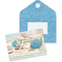Cape Shore Sea Shells Boxed Note Cards