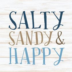 P. Graham Dunn Salty Sandy & Happy Car Charm