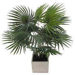 Coastal Home 24'' Artificial Fan Palm Pot Arrangement