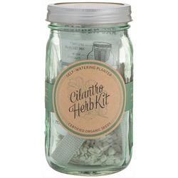 Modern Sprout Cilantro Herb Garden Jar Kit