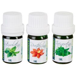 Aroma2Go 3-pc. Essential Oil Mint Set