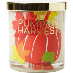 Tri-Coastal 11 oz. Orange Pumpkin Harvest Jar Candle
