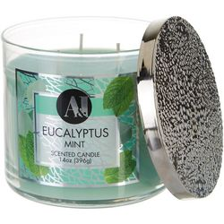 MVP Group International 14 oz. Eucalyptus Mint Jar Candle