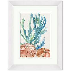 Coastal Home Sea Urchin Medley Framed Art