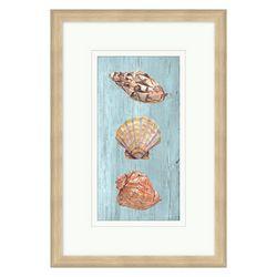 Coastal Home Shell Trio Framed Wall Art