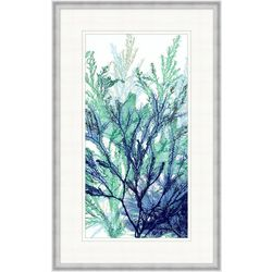 Palm Island Home Coral Medley II Framed Wall Art