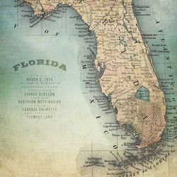 Palm Island Home Florida Map Wall Art
