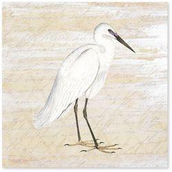 Palm Island Home Shore Birds I Canvas Wall Art