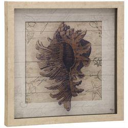 Stylecraft Sea Shell Shadow Box Framed Art
