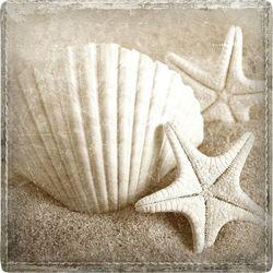 P. Graham Dunn Make A Wish Shell Coaster