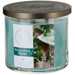 Vesta 14 oz. Eucalyptus Leaves Jar Candle