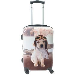 Chariot 20'' Oldies Hardside Spinner Luggage