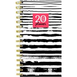 TF Publishing 2019-2020 Painted Stripes Monthly Planner