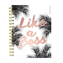 TF Publishing 2020 Blush Boss Medium Weekly Monthly Planner