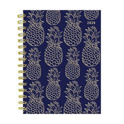 TF Publishing 2020 Navy Pineapple Weekly Monthly Planner