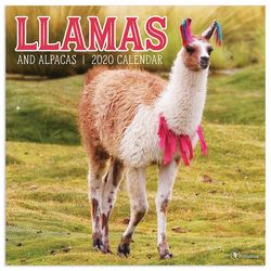 TF Publishing 2020 Llamas Wall Calendar