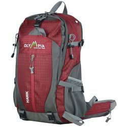 Olympia Luggage Hawk 20'' Outdoor Backpack