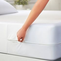 Home Collections Bed Bug & Spill Proof Mattress