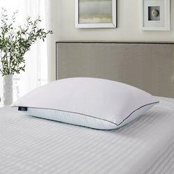 Serta 2-pk. Goose Feather Jumbo Size Bed Pillow Set