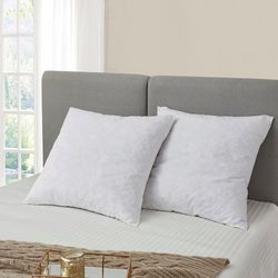 Serta 2-pk. Feather Euro Square Pillow Set
