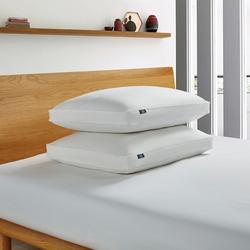 2-pk. Goose Feather & Down Fiber Jumbo Side Pillow Set