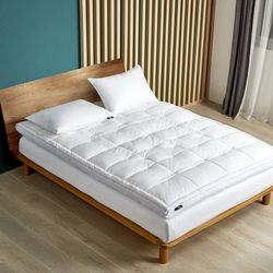 Serta 2'' Feather & Down Fiber Top Featherbed