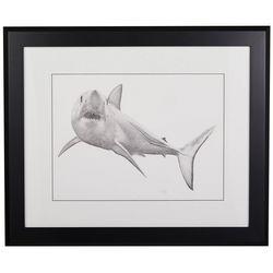 Linnea Szymanski 'Mako' Original Drawing Framed Art