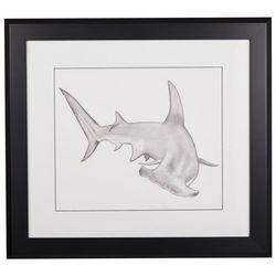 Linnea Szymanski 'Hammerhead Shark' Original Drawing