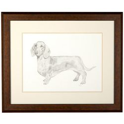 Linnea Szymanski 'Daisy' Original Drawing Framed Art