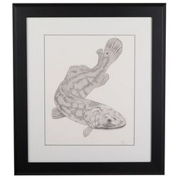 Linnea Szymanski 'Ben The Bowfin' Original Drawing