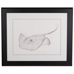 Linnea Szymanski 'Scooter' Original Drawing Framed Art