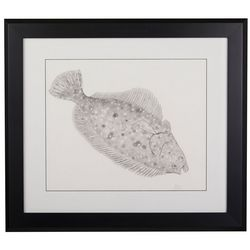 Linnea Szymanski 'Flounder' Original Drawing Framed Art
